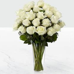 PURE WHITE- DOZEN ROSES from Sidney Flower Shop in Sidney, OH