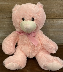 TEDDY BEAR PINK from Sidney Flower Shop in Sidney, OH