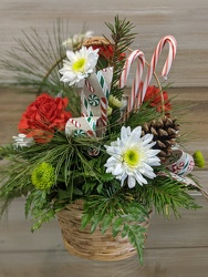 CANDY CANE BASKET from Sidney Flower Shop in Sidney, OH