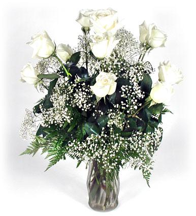 Sidney flower shop florist in sidney ohio oh serving shelby dozen white roses wfiller from sidney flower shop in sidney oh click here for larger image dozen white roses mightylinksfo